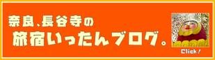 奈良 長谷寺 宿 ゲストハウス いったん ブログ 更新