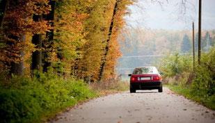 Vuelta a la rutina del otoño - www.AorganiZarte.com