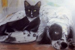 Retrato de mascotas, 50 x 75cm, 1996.