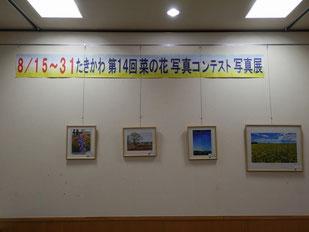 右端が田村さんの作品です