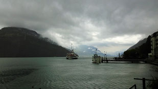 das Dampfschiff Uri kommt aus Luzern