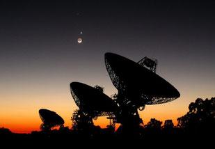 Radiotelekope, Foto: Graeme L. White/Glen Cozens (James-Cook-Universität)