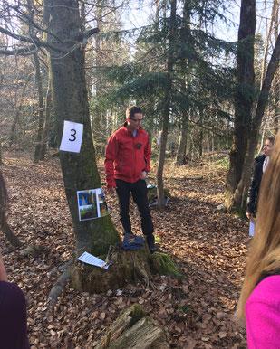 Wissensvermittlung im Wald