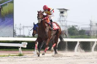 トランヴェール号と鞍上の永島太郎騎手       PHOTO by (C)fanfan/H.Taniguchi
