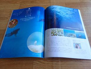 石垣島でのんびりダイビング「恋する石垣島」ヒートハートクラブ