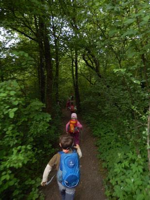 森の中を駆け抜ける森のようちえんの子供たち