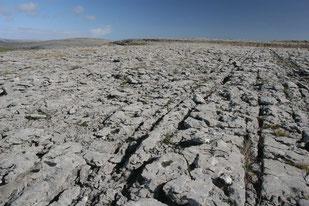 Der Burren - Karstlandscahft am Meer