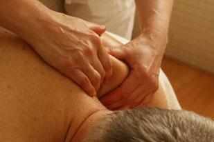 Massage, Wellness in der Hundephysiotherapie Heike Amthor in Leipzig Stötteritz