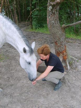 Ouvrir son intuition par la relation avec le cheval.