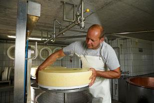 Käse wird aus der Form geholt