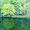 「緑映(御射鹿池/長野)」水彩画 講師作品 個人蔵