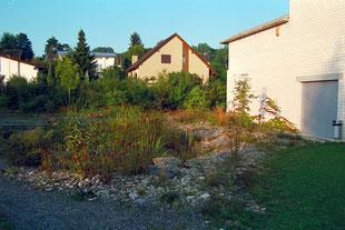 Retentionsfläche, Steingarten, Dachwasser, Reinigungspflanzen