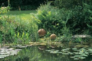 Teich, Seerosen, Farn, Naturgarten
