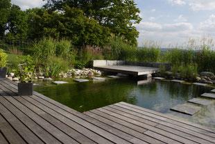 Schwimmteich, Holzdeck, Trittsteine, formaler Garten, Gräser