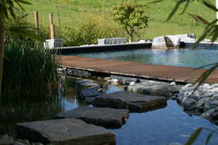 Schwimmtecih, Holzsteg über Wasser, Trittsteine im Wasser