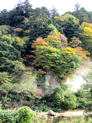 昨秋の片平界隈の秋景色