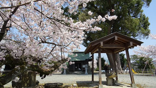 永岡八幡宮 手水場