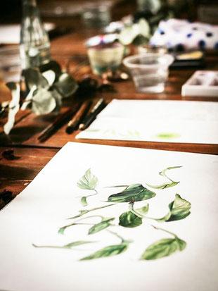 Berlin, Aquarellfloral watercolor, workshop Berlin, malen lernen Berlin, Skizzenbuch, Berlin, florale Aquarelle, Blumen malen, botanische Aquarelle, youdesignme, Pflanzenliebhaber