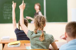 Schulleistungsdiagnostik