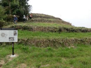 古墳ガイドの風景