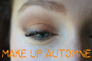 make up automne