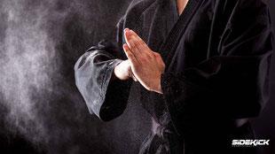 Karate Meister Friedrichshafen in Langenargen