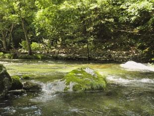 夏の日差しと透き通った水