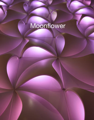 Moonflower Leuchtensystem