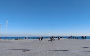Гид, Барселона