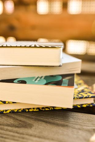 Gesellschaftskritische Buchempfehlungen RiekesBlog