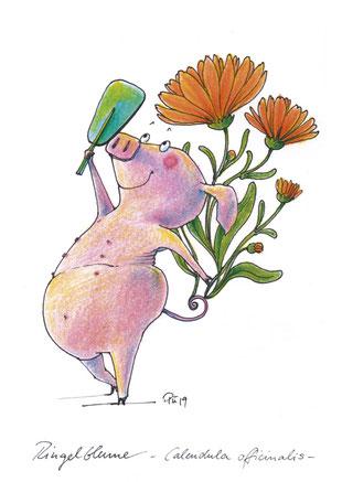 Ein Schweinchen hält sich einen Spiegel über den Kopf, um die Ringelblume zu betrachten, die aus seinem Ringelschwänzchen wächst.