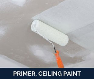 para paints - primer, ceiling paint