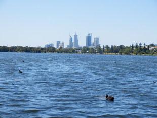 モンガー湖からのパース市街地は絶景
