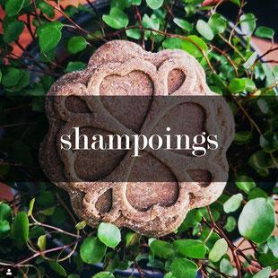 cliquez pour découvrir les soins pour les shampoings