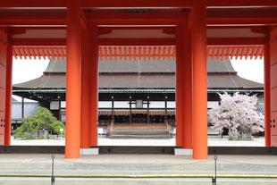 左近の桜、右近の橘(京都御所 紫宸殿)