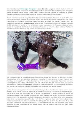 Bild: Artikel über Hunde Unterwasser Fotografie