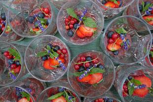 Pudding mit Fruchtspiegel