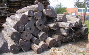 Ebony, Round logs, Max Cropp Hamburg, Germany