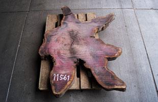 Amaranth Stern, Baumscheibe, Slab, Purple Heart, Massivholz