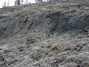 Adelholzen Formation, Typusprofil