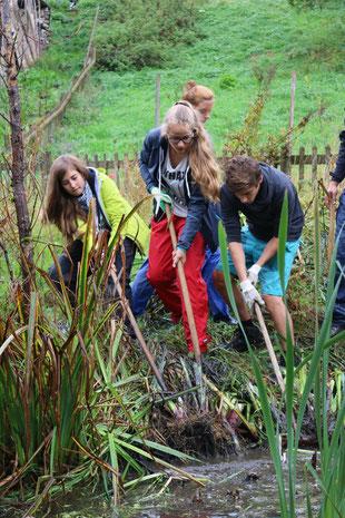 Jugendliche bei einem Arbeitseinsatz in der Natur (Teichputz)