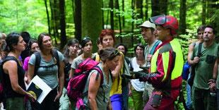 Weiterbildungen für  Forstämter