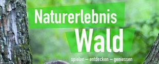 Titelblatt Buch Naturerlebnis Wald