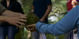 Gemeinsam in der Natur