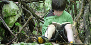 Lernort Natur: Kinder im Wald