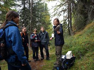 Umweltbildung in den Alpen - Präsentation des Tannenhähers