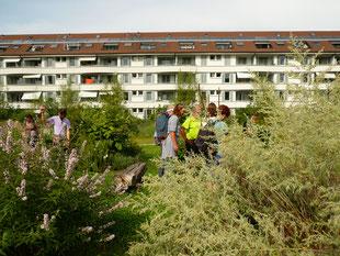 Eine Gruppe Teilnehmender diskutiert im Stadtgarten