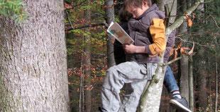 Praxishandbuch: Draussen unterrichten, Kinder lesen im Baum