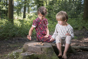 Naturbezogene Umweltbildung mit Kindern im Wald