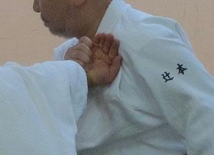 ②左胸を入り身運動で母指の腹の方向へ向く。ここでは受けの掌から取りの襟部分が抜け落ちている。本来は受けの掌が見えない